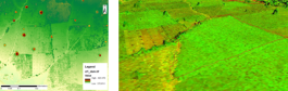 Trees are clearly visible, as well as boundaries defined by paths or higher vegetation in the UAV image.