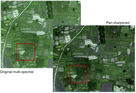 Figure 2. Subsets of original multi-spectral image and its corresponding pan-sharpened image, the latter one providing more details than the multi-spectral image.