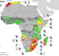 Early warning crop monitor Africa