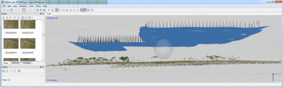 Figure 5.10: Point Cloud in AGISoft (source: STARS CIMMYT team)