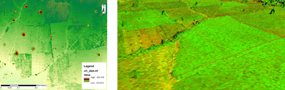 Figure 3: using the height information from the fixed-wing UAV recordings over the study area. Trees are clearly visible, as well as boundaries defined by paths or higher vegetation.