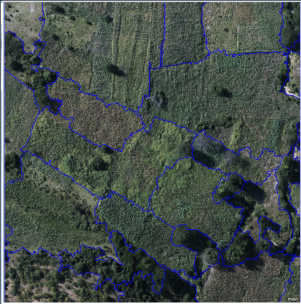 Delineating farm boundaries - STARS Project