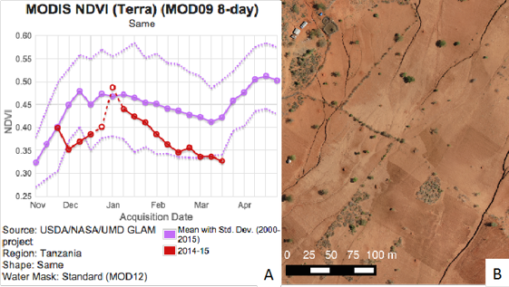 Figure: A shows significantly below average NDVI during the main growing season in Same District in northern Tanzania. The current season is shown in red, the long-term average from 2000-2015 is shown in purple and the dotted lines represent the standard deviation over the same time period. Figure B shows a natural-color UAV image obtained over the AgriSense study site in Same District with still bare soils three weeks into the main growing season.