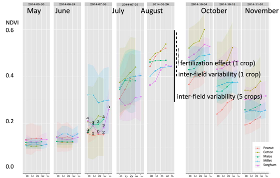 Figure 4.9 Monthly NDVI temporal profiles of major crop types in Mali (Source: STARS Mali team).