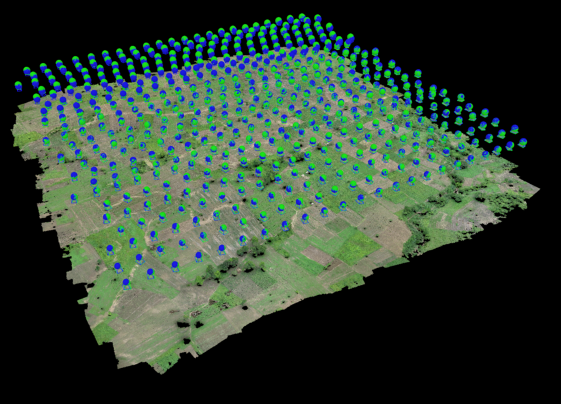 Figure 5.11: Point cloud and super-imposed camera positions in the Pix4D software package (source: STARS AgriSense team).
