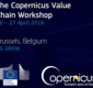 The Copernicus Value Chain Workshop
