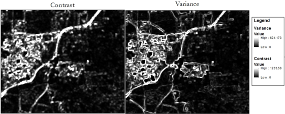 Figure 1. Contrast and variance texture applied to an image subset of the study area.