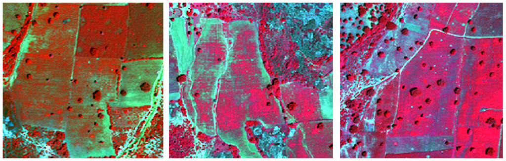 Remote Sensing and crop recognition: Improving the