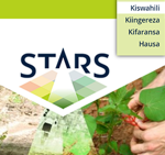 STARS in French, Hausa and Swahili