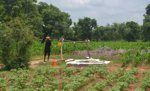 Designing novel classification approaches for mapping smallholder farms